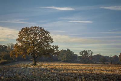 A Frosty Autumn Morning Print by Chris Fletcher