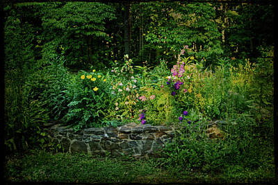 Photograph - A Garden In The Woods by Mother Nature