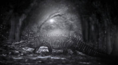 Alligator Photograph - A Giant In The Forest by Mark Andrew Thomas