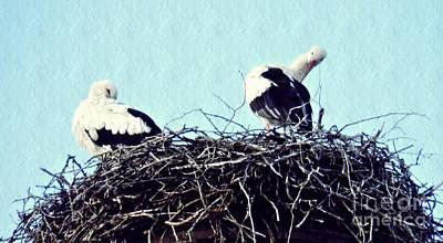 Stork Digital Art - A Happy Stork Couple by Sarah Loft