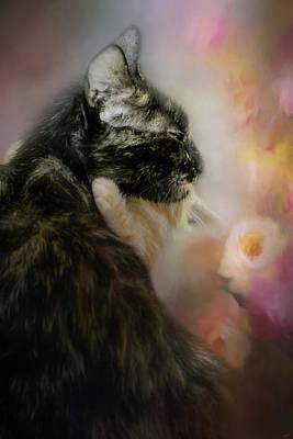 Kitten Photograph - A Hug For Momma by Jai Johnson