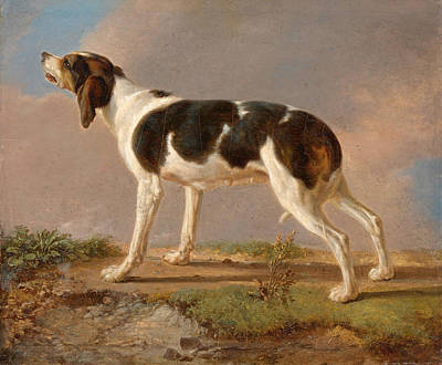 Jacques Laurent Agasse Painting - A Hunting Dog by Jacques-Laurent Agasse