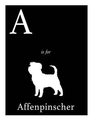 Affenpinscher Digital Art - A Is For Affenpinscher by Michelle O'Hollaren