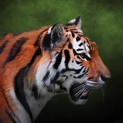 Jordan Painting - A Leader - Siberian Tiger Art  by Jordan Blackstone