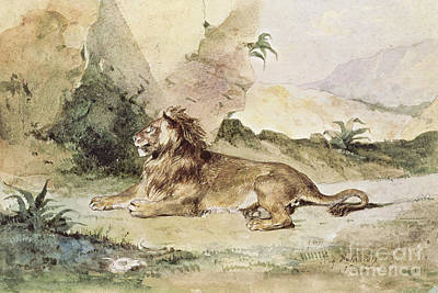 A Lion In The Desert Print by Eugene Delacroix