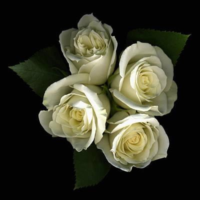 Floral Bouquet Photograph - A Little Gift Of Roses by Deborah J Humphries