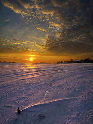 Snowscape Photograph - A Lone Morn by Phil Koch