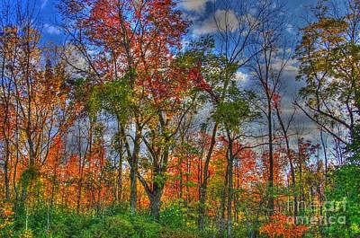 A Michigan Fall Print by Robert Pearson