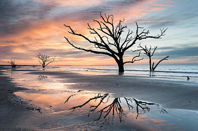 A Moment Of Reflection - Charleston's Botany Bay Boneyard Beach Print by Mark VanDyke