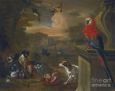 Macaw Art Painting - A Monkey A Spaniel by  Jakob Bogdany