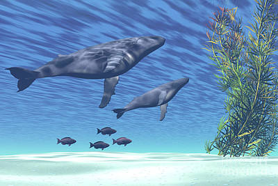 Calf Digital Art - A Mother And Calf Humpback Whale Rise by Corey Ford