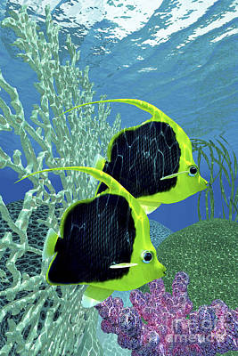 Two Fish Digital Art - A Pair Of Pennant Coralfish Swimming by Corey Ford