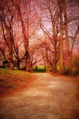 A Path To Fantasy - Holmdel Park Print by Angie Tirado