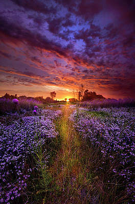 Heaven Photograph - A Peaceful Proposition by Phil Koch