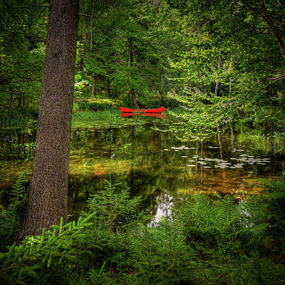 A Peek At The Red Canoe Print by David Patterson