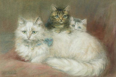Two Tailed Painting - A Persian Cat And Her Kittens by Maud D Heaps