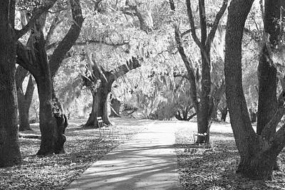 Walkway Digital Art - A Place For Contemplation Ir by Suzanne Gaff