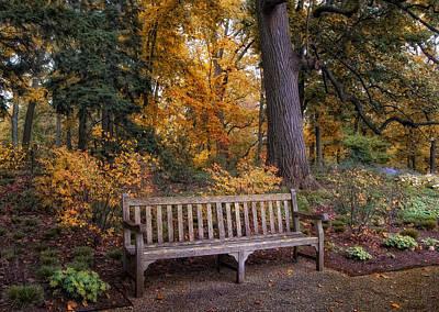 A Place To Rest Print by Jessica Jenney