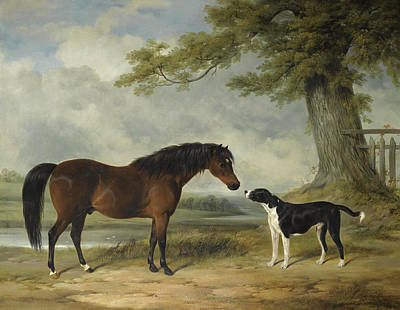 Painting - A Pony With A Dog by William Barraud