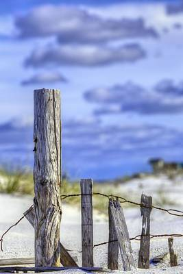 A Posting From Panama City Beach Print by JC Findley