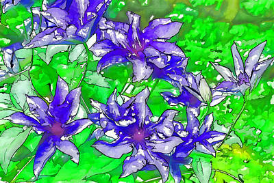 Clematis Painting - A Purple Clematis Flower In Full Bloom by Lanjee Chee