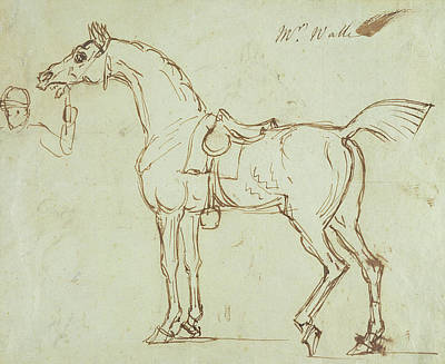 Jockey Drawing - A Racehorse, Bridled And Saddled  by James Seymour