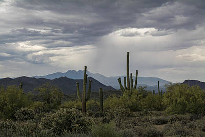 Rainy Day Photograph - A Rainy Desert Afternoon  by Saija  Lehtonen