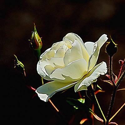 Blooming Digital Art - A Rose Digital Art by Ernie Echols