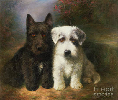 Look Painting - A Scottish And A Sealyham Terrier by Lilian Cheviot