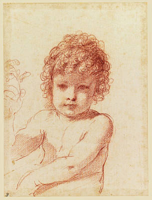Drawing - A Seated Putto Holding A Flower by Guercino