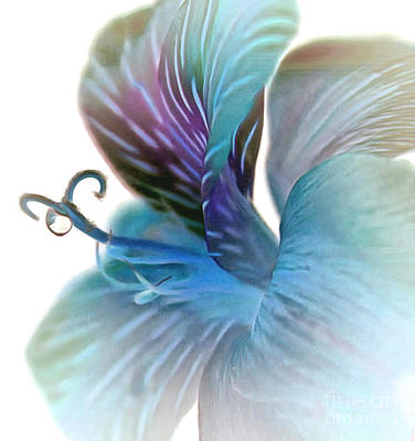 Blue Flowers Photograph - A Single Drop Of Hope by Krissy Katsimbras