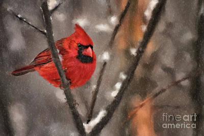 Cardinal Digital Art - A Spot Of Color by Lois Bryan