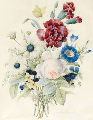 A Spray Of Flowers Including A Rose A Blue Convolvulus And Pansies Print by Caroline Adrien