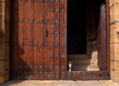 Iglesia Photograph - A Tabby Cat In The Doorway by Panoramic Images