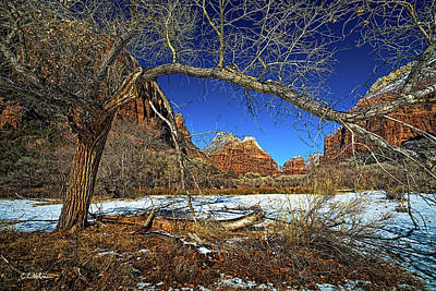 A View In Zion Print by Christopher Holmes