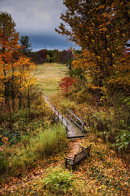Red Leaves Photograph - A Walk In The Park I by Tom Mc Nemar