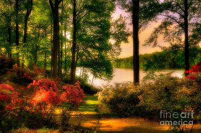 A Walk In The Park Print by Lois Bryan
