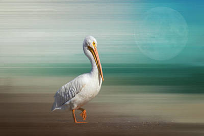 A Walk On The Wild Side Print by Kim Hojnacki