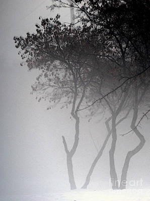 A Walk Through The Mist Print by Linda Knorr Shafer