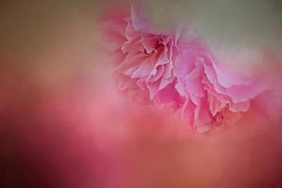 A Whisper Of Cherry Blossoms Print by Jai Johnson