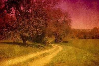 Country Dirt Roads Digital Art - A Winding Road - Bayonet Farm by Angie Tirado