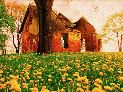 Abandoned Beauty Print by Emily Allred