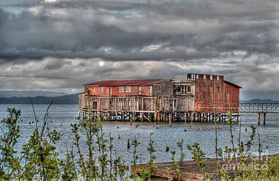 Oregon Photograph - Abandoned Cannery by Hilton Barlow