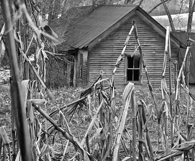 Abandoned Farmhouse Through Cornfield Print by Douglas Barnett