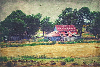 Abandoned Red Tin Roof Barn Print by Anna Louise