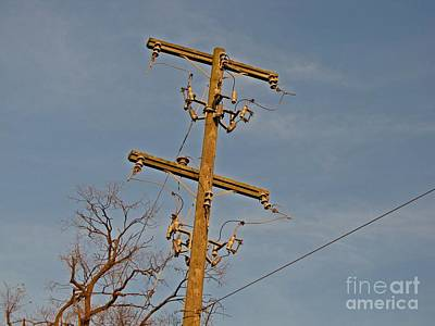 Public Jail Photograph - Abandoned Utility Pole At Lorton Reformatory by Ben Schumin