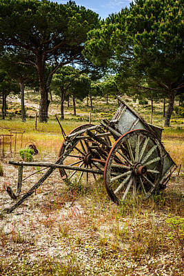 Cartwheel Photograph - Abandoned Wooden Cart I by Marco Oliveira