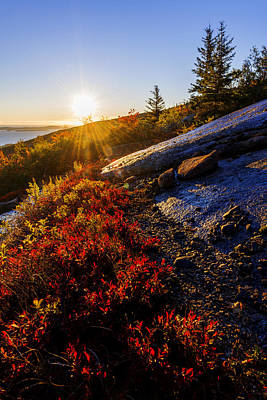 Above Bar Harbor Print by Chad Dutson