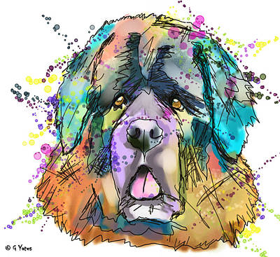 Newfie Digital Art - Abstract Anoushka by Gary Yates