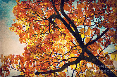 Abstract Autumn Impression Print by Angela Doelling AD DESIGN Photo and PhotoArt